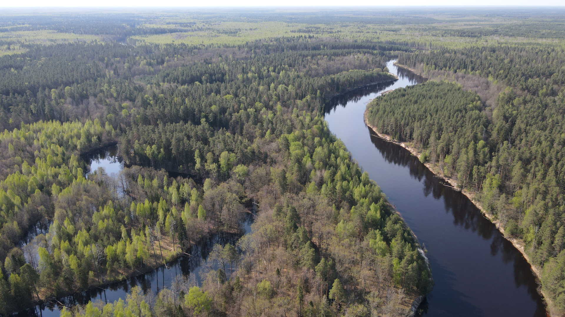 Озеро Сиротинное (слева) и Керженец. 12.05.2021