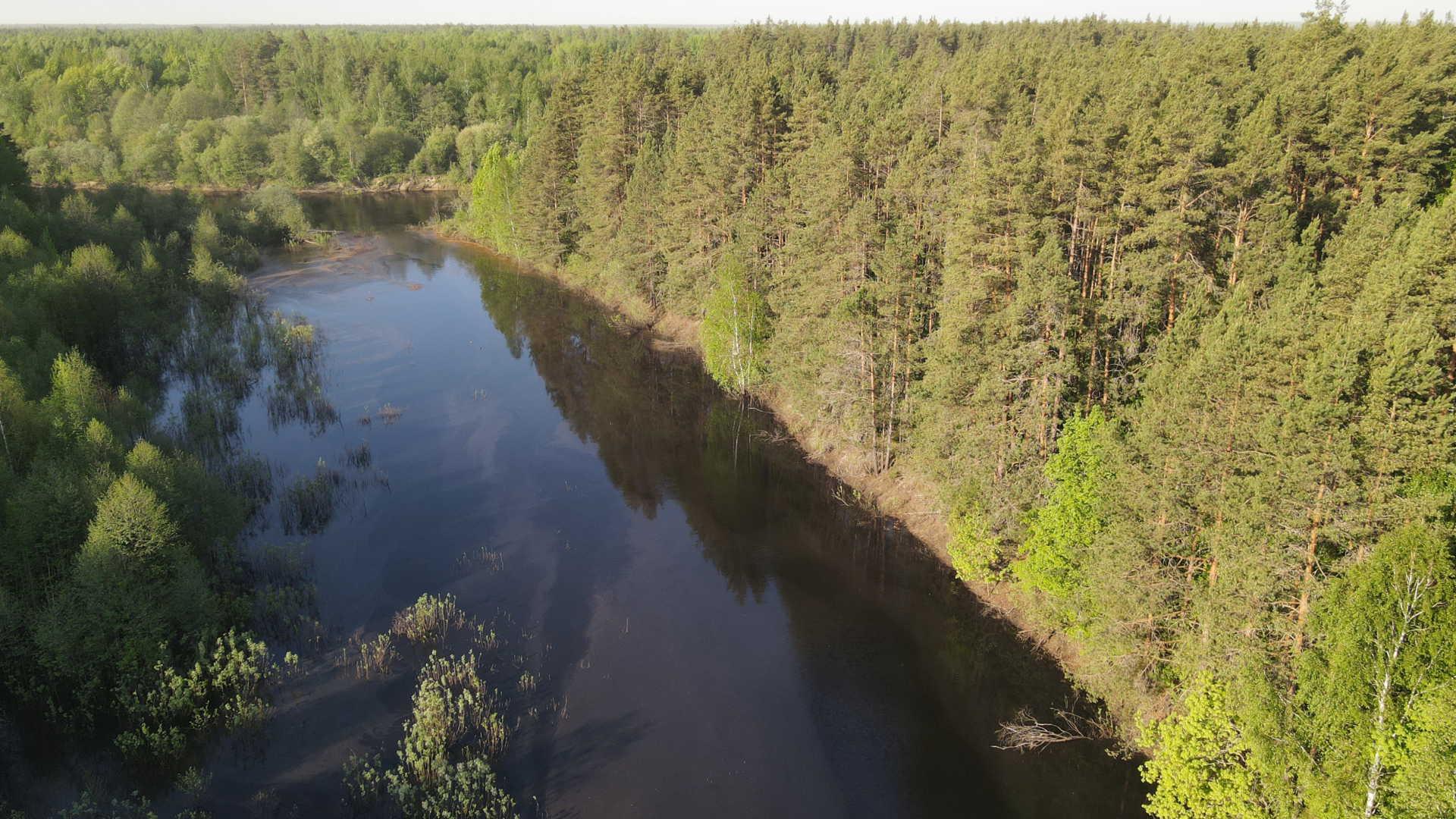 Озеро у к. Черноозерье. 19.05.2021
